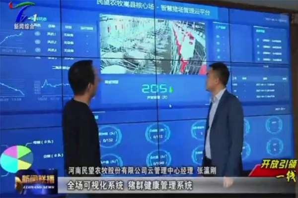 猪智汇标杆项目获洛阳电视台采访播报